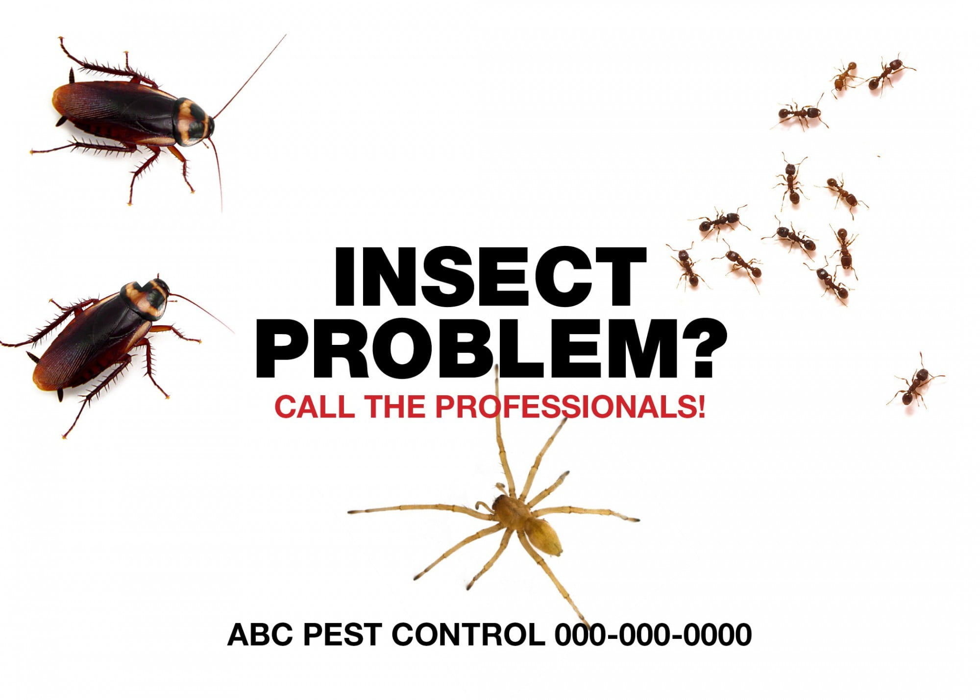 Pest-Control-Postcard-Sample-6-e1431471732723.jpg