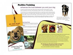 Vet Brochure Sample
