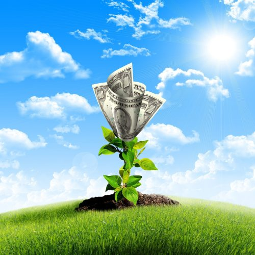 Tips to Grow Your Business Today